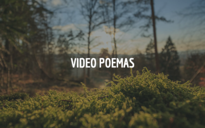 Creando Vídeo Poemas
